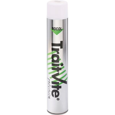 Aérosol blanc - 750 ml - Traitvite - Rocol