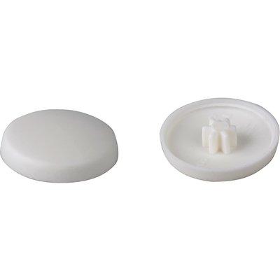 Capuchon blanc - Vis FFS TX30 - Boîte de 100 pièces - Fischer