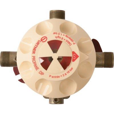 Détendeur gaz propane - Inverseur automatique Dip