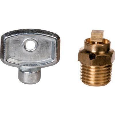 """Purgeur d'air laiton à carré - M 1/4"""" - Watts industries"""