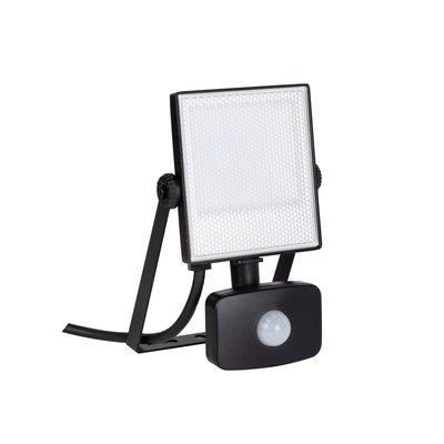 Projecteur LED avec détecteur 30 W ENERGIZER