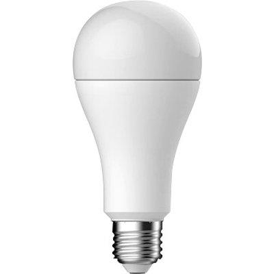 Ampoule à LED standard - Culot E27 - Angle 160°