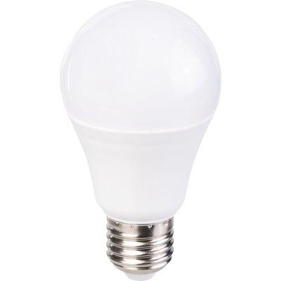 Ampoule à LED standard - Culot E27 - Angle 200°