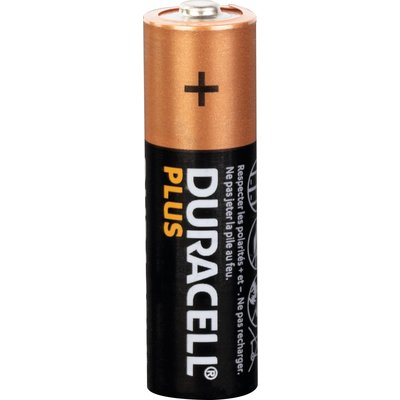 Piles Duracell Plus 100% AA