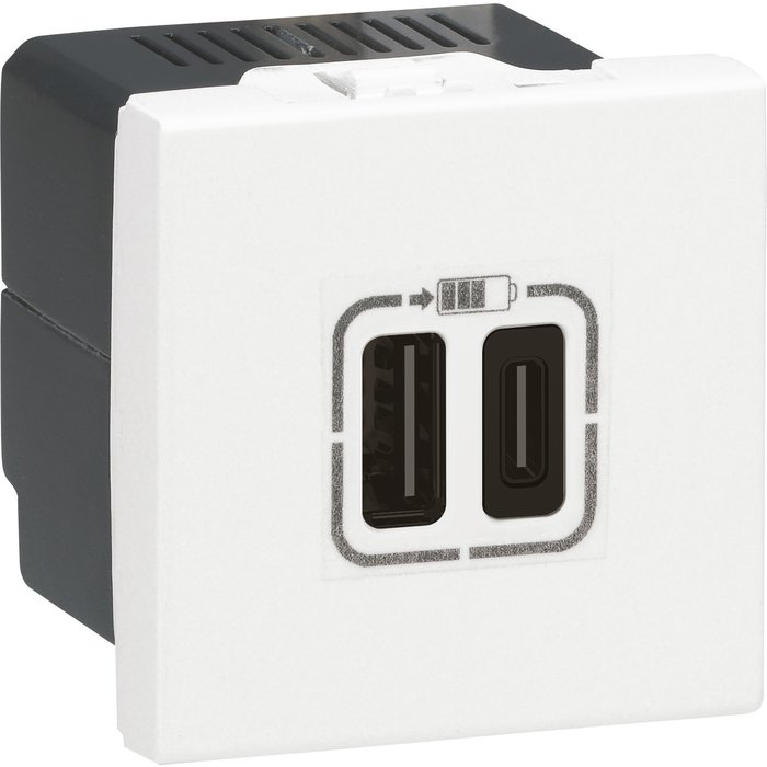 Prise de chargeur USB type A / type C Mosaic - Double - 2 modules-1