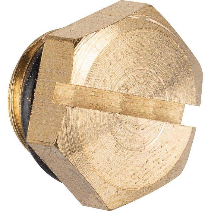 Bouchon + joint pour pompes 490079 - 490087